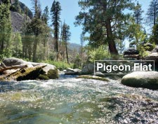 Brightman Complex Campground - Pigeon Flat - Dodge Ridge