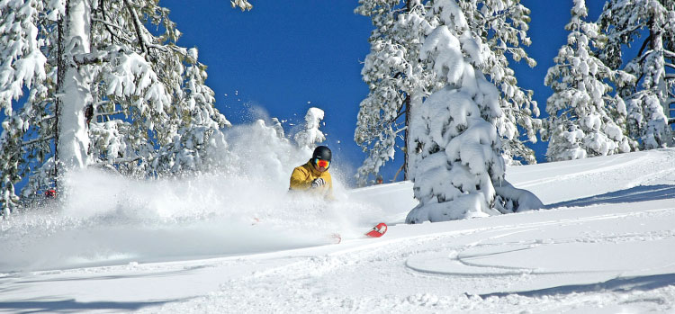 Powder Day Photo - Sign Up For Dodge Ridge Emails