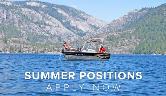 Dodge Ridge Summer Campground Operations - Apply Online Now Button